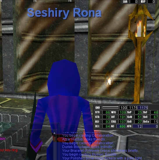 EverQuest_Progression_41_Screenshot26