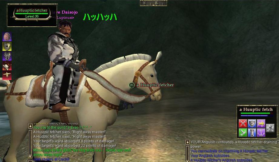 白馬に白いRobe・・・きめすぎです!w